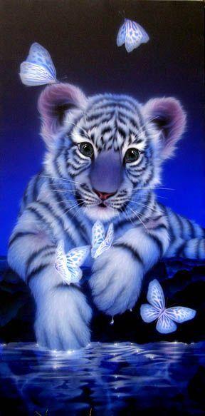 Le Bebe Tigre Et Les Papillons